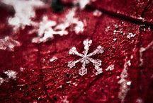 Invierno / Las maravillas del invierno