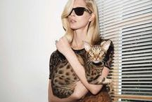 Fashion editorials featuring cats