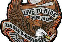 Never Say Spy:  Arnie's World / Biker, Harley-Davidson fan, blues guitarist, army sniper, cat lover, and crocheter - here's a glimpse into Arnie (Hellhound) Helmand's life.  The Never Say Spy series:  https://blog.dianehenders.com/books/