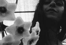 Hoya carnosa / Fiore di cera