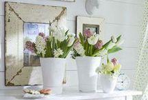 Bouquets, fleurs, plantes... / by Mu