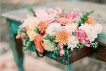 Flowers / Perchè la bellezza è ovunque e basta saperla cercare, a volte si nasconde dietro foglie verdi appena bagnate di rugiada...