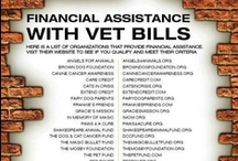 Vet Care / Through advice on training, vet care, proper diet and grooming, we can educate those pet owners who want to do the right thing, but just don't know how. That knowledge will help keep pet owners from giving up and surrendering their beloved pets to shelters and rescue groups.