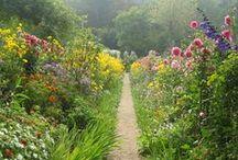 garden / vegetable and flower gardening ideas