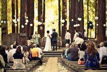 Wedding Love x