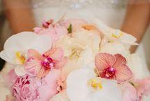 Wedding L&L