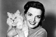 pets with famous owners