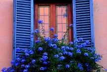 Windows, Staircases / by Terrie Westbrook
