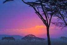 Africa Travel Ideas from the Pros / Awesome places to visit while in Africa - whether the Sahara, the Cape wine country, wildlife safaris, or Victoria Falls beckons, there are some great ideas here of places to visit when traveling through Africa.  http://lifeotherthan.com/travel-destinations/africa-trip-ideas/