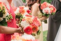 Gerbera Daisies / Simplicity can have a big impact.  Coral Gerberas line the aisle waiting for the beautiful bride.