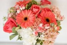 CORAL / FANTASTIC COLOR IN BRIDAL FLOWERS