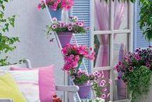 Beautiful Flowers and Gardens / Lindas flores e jardins... ainda farei pra mim um belo jardim ! #SonhoDeUmJardimFloridoEmMinhaCasa! Flores me encantam .... por isso amo essa Beleza das Flores que Deus fez..
