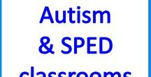 Ideas for Autism and Sped Classrooms / Educational and Sensory activities & resources for teaching students with autism and special needs.