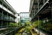 Bangor University / https://www.studentcrowd.com/university-l1003045-s1008545-bangor_university-bangor
