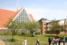 University of Chichester / https://www.studentcrowd.com/university-l1001480-s1008612-the_university_of_chichester-chichester