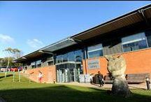 Farnham University