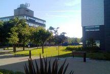 Brunel University / https://www.studentcrowd.com/university-l1043238-s1008589-brunel_university_london-uxbridge