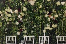 L and H: Installations and backdrops / Backdrops by leaf and honey