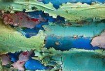 Corium parietis Art / #Corium parietis#Paint comes off #壁皮#ペンキ剥がれ