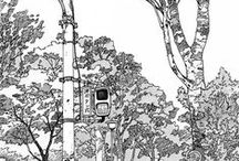 Environmental Art of design / #Environmental design