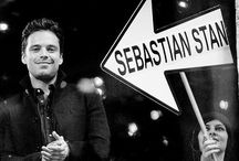 Sebastian Stan / Aww look a lost Romanian puppy.