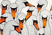 B I R D S / Cool birds
