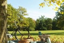 Simple Escapes / Spontaneous picnics. Dining al fresco. This is the season to enjoy dining outdoors!