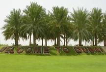 Dubái (EAU) 1 / País: Emiratos Árabes Unidos. Emirato: Dubái, en árabe: دبيّ Dubeii. Incorporado ciudad: 9/6/1833. Independencia del Reino Unido: 2/12/1971. Fundador: Maktoum bin Suhail bin Bati Al Maktoum (1833).   Emirato ubicado al sur del Golfo Pérsico, en la Península Arábiga. Tiene la mayor población, el segundo mayor territorio de todos los emiratos, después de Abu Dhabi.