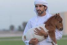 Hamdan MRM: con caballos 1 / Hamdan bin Mohammed bin Rashid Al Maktoum (Fazza'a) 14/11/1982 . Nombrado príncipe heredero de Dubái el 01/02/2008.   - Padre: Mohammed bin Rashid bin Saeed Al Maktoum.  - Madre: Hind bint Maktoum bin Juma Al Maktoum.