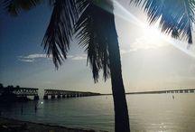 Fancy Florida / Miami & The Keys
