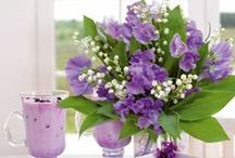 MUGUET joli / Lily of the Valley