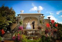 Jericho Terrace's Grounds / Jericho Terrace is known for its elegant catering hall that is accented with romantic bridal gardens, glorious patios and spectacular atriums.