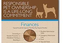 Animal Health Infographics