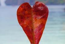 Date Ur Love