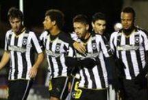 Botafogo estrela maior