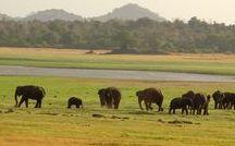 Reisen nach Sri Lanka / Privatreisen nach Sri Lanka (ab 2 Personen buchbar, zu Ihrem Wunschtermin)