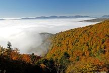 Montagne des Vosges