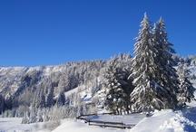L'Alsace en hiver
