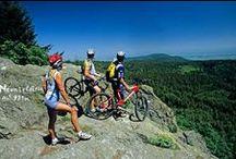 Randonnées en Alsace / Partez à la découverte du Massif des Vosges ! Sur plusieurs jours ou pour une randonnée d'une journée, en famille ou entre amis, inventez votre parcours au gré de vos envies.