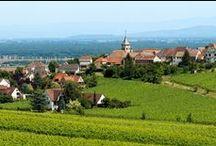 Terre et Vins au Pays de Colmar / Autour de Colmar, le territoire « Terre & Vins au Pays de Colmar » est une destination unique où se mêlent paysages de plaines, montagne vosgienne et vignoble.