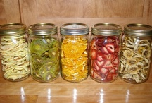 `Sun Dried` Goodies  / Making wonderful food with a dehydrator!