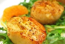 Fresh Scallops / Recipes  for preparing fresh scallops