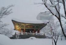 강릉폭설 Gangneung Snow / 2014년 2월 6일(목)오후부터 2월 11일(화)오전까지 강릉시에 무려 117cm이 이르는 폭설이 내렸습니다. 강릉의 아름다운 설경을 감상하시죠.^^