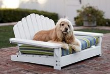 Furniture for Dogs / Some of the neatest dog furniture ideas from around Pinterest and the web!