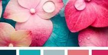Color Palettes / An assortment of color palettes than can inspire home, crafts, and art projects.
