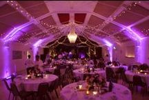 Our Work // Ambient Uplighting / Lighting by Oakwood Events Ltd. Ambient mood lighting to transform venues. All pins here are our own work.