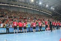 RK Vardar  / RK Vardar PRO (HC Vardar PRO) (Macedonian: РК Вардар ПРО) is a handball club from Skopje, Republic of Macedonia. The team currently competes in the EHF Champions League and in the regional SEHA League. Vardar is the most successful team in the country having won seven Macedonian League titles and eight Macedonian Cups. Oficial web site: http://rkvardar.com.mk/