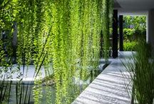 gardens / beautiful and simple gardens