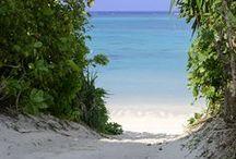 Beach / ビーチ / オールインクルーシブリゾートClubMedのビーチなど