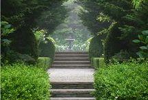 secret garden / green and magic!